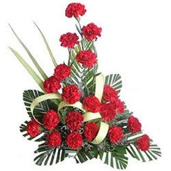 Lovely Red Carnations Arrangement