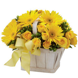 Blooming Yellow Roses N Gerberas Basket