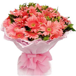 Wonderful Pink Gerberas Bouquet