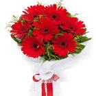 Prismatic Magic Red Gerberas Bouquet