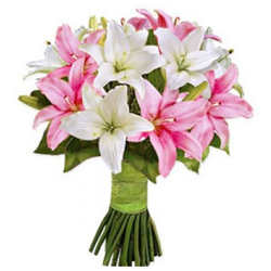 Stylish Bouquet of 10 Pink and White Roses