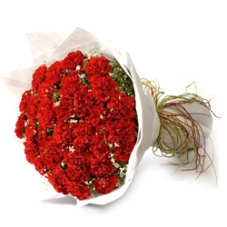 Stunning Bouquet of 18 Red Carnations