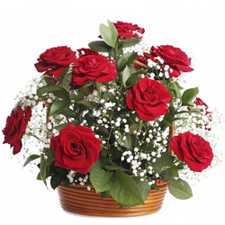 Expressive Birthday  Arrangement of Red Roses