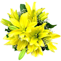 Anniversary Gleam Yellow Lilies Bouquet