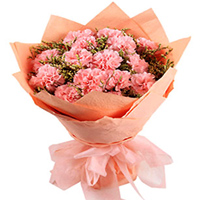 Order this mesmerizing Hand Bouquet of Pink Carnations in tissue wrapping