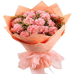 Awesome Bouquet of Pink Carnations