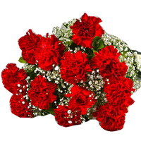 Order this regal Bunch of Fresh Red Carnations