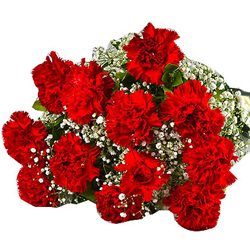 Awesome Bouquet of Red Carnations
