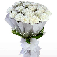 Order for this regal Hand Bouquet of White Cranations in a tissue wrap