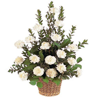 Order this attractive White Carnations in a basket