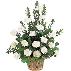 Attractive White Carnations Basket