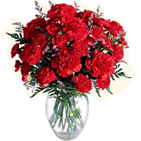 Now order online for these mesmerizing Red Carnations in a glass vase