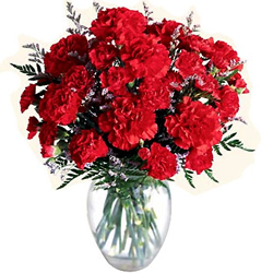Attractive Vase arranged with Red Carnations