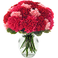 Order for these blossoming Red & Pink Carnations in a glass vase