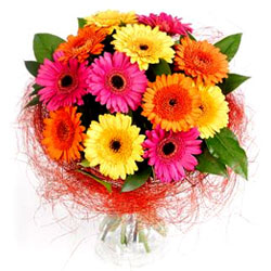 Wonderful Bouquet of Fresh Gerberas