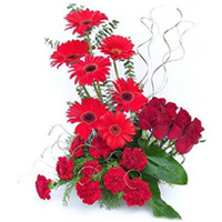 Artful Presentation of Carnations with Roses and Gerberas