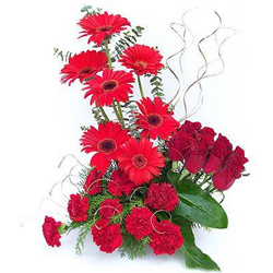 Exquisite Roses, Carnations N Gerberas Arrangement