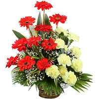 Exotic Presentation of Red Gerberas with Yellow Carnations in a Basket
