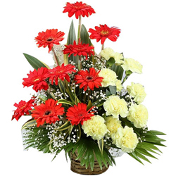 Attractive Basket of Gerberas with Carnations