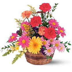 Wonderful Basket of Gerberas N Carnations
