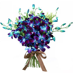 Stunning Bouquet of Blue Orchids