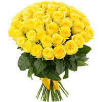 Glorious Presentation of Yellow Color Roses