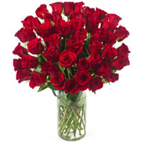 Blooming Gift of Red Color Roses in a Glass Vase
