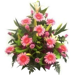 Wonderful Pink Roses and Attractive Gerberas