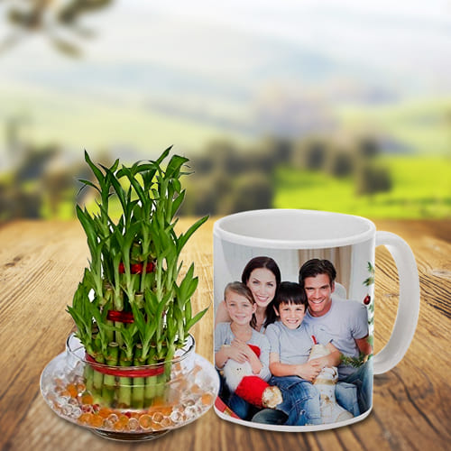 Everblooming 3 Tier Good Luck Bamboo Plant in a Personalized Coffee Mug