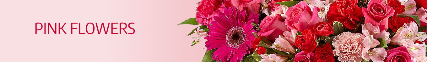 Pink Flowers Delivery in India