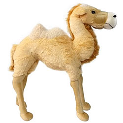 Outstanding Standing Camel Soft Toy