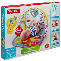 Fisher Price's Gaiety Inviting Gimcrack