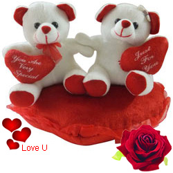 Lovely Couple Teddy with Heart Touching Romance