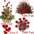 3 day Serenade for Your Dream Love